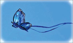z_p18-The-butterfly