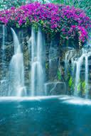 waterfallcrisp