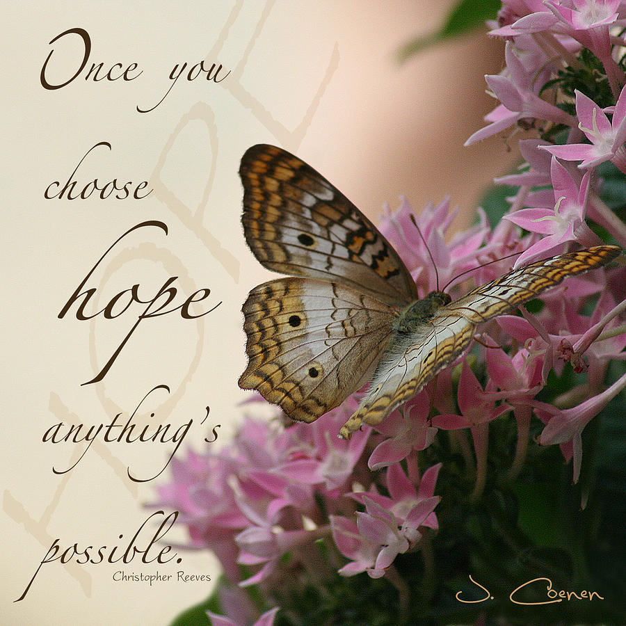 hope-butterfly-jane-coenen